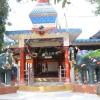 Parm Mitra Golden Jubilee Festival (63)