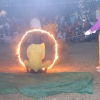 Parm Mitra Golden Jubilee Festival (95)
